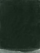 N.CAT. 198