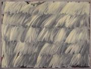 N.CAT. 497