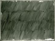 N.CAT. 498