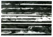 N.CAT. 530