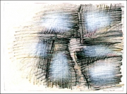 N. 89-007