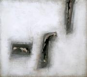 N.CAT. 889