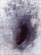 N.CAT. 1147