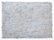 N. 13-011