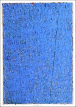 N. 16-020