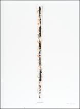 N. 17-022