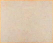 N.CAT. 1591