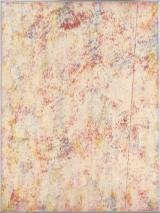 N.CAT. 1613